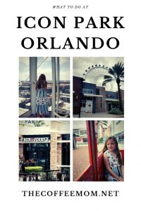 Planning a trip to Orlando soon? Check out what to do at Icon Park Orlando for a fun filled day in sunny Florida!