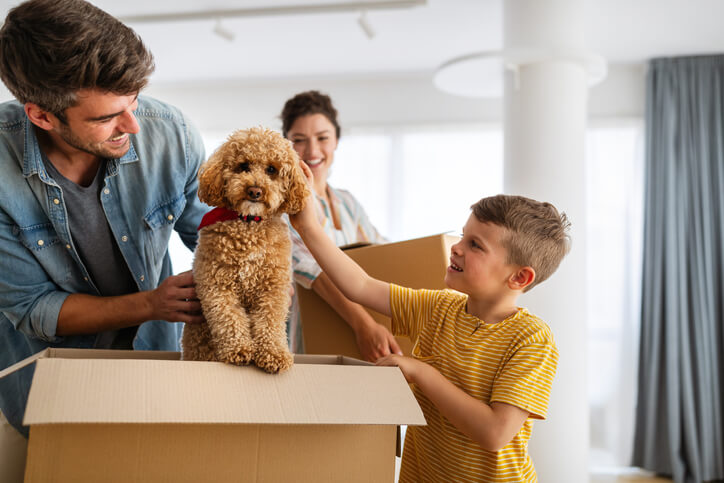 4 Tips for a Less Stressful Move
